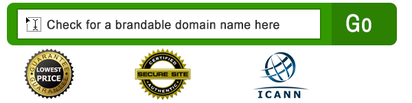 check-brandable-domain